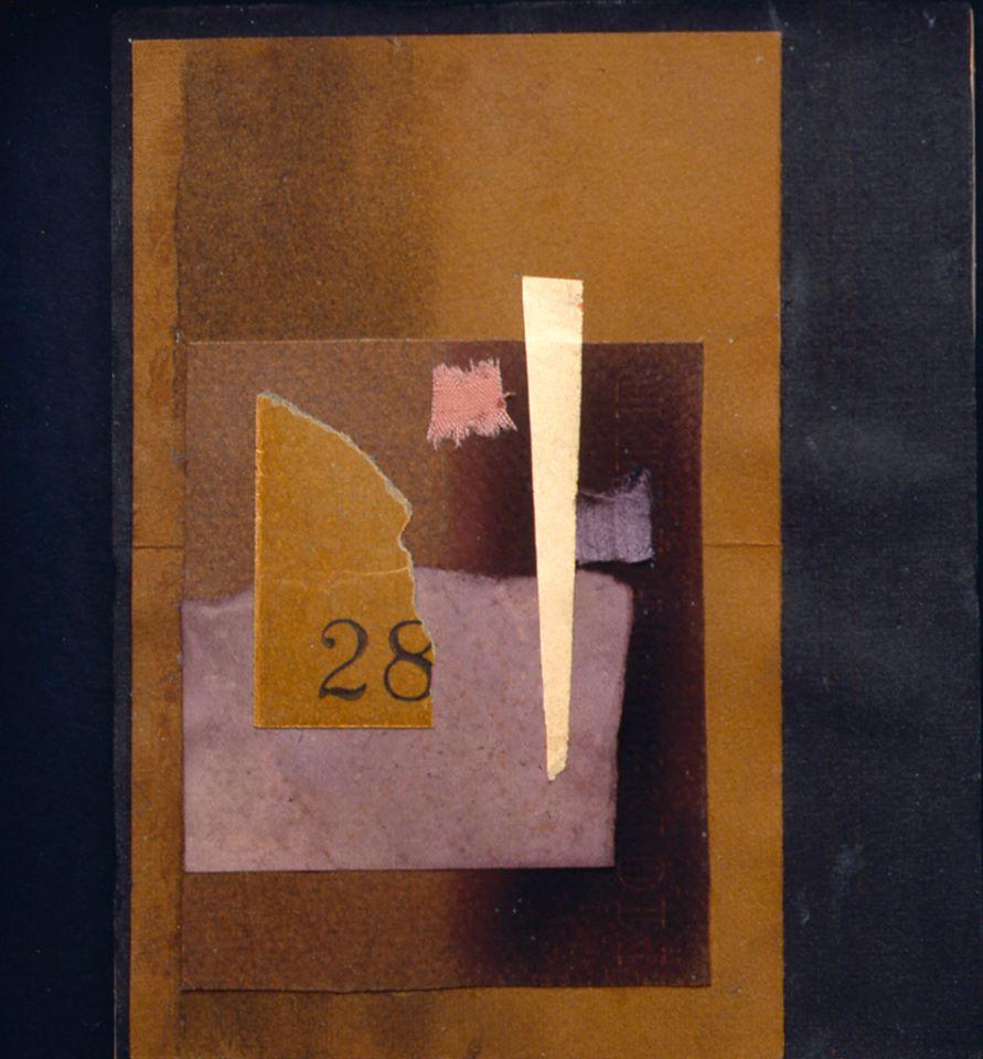 nº28 de amparo cores